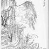 うわん ―人と妖怪の境界線― ( 北陸オカルト会:妖怪解説 )