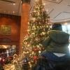 Merry Christmas 🎄 恵比寿ウェスティンホテルのクリスマスツリー🌟2019