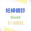 36w0d 妊婦健診【12回目】 初NSTと貧血