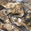 牡蠣の美味しいお店 in 広島