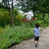 十勝ヒルズで(綺麗な)虫捕り&おしゃれランチ 《自然と食育、子供のための北海道旅行4日間!》