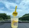 【徳島・淡路島】中国・四国地方旅行 / Chugoku Shikoku region Trip!⑤