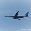 ◆機内食にフルーツミールをリクエスト◆厦門航空 エコノミークラス◆厦門→香港◆