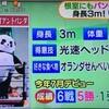 【3mのパンダ!?】北海道のプロレスを応援しよう【アンドレザ・ジャイアントパンダ】新根室プロレス 他