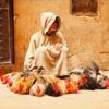 新婚旅行 IN モロッコ-迷宮の町フェズー②