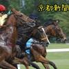 5月5日(土)「京都新聞杯」予想☆素人が回収率100%超えることができるのでしょうか!?