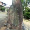 江津諏訪神社「玉垣建設記念」碑