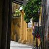 「ベトナムに行こう♪_ホイアン旅行#4_旧市街散策2」_撮影特訓編