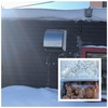 札幌市・北区・篠路エリア、半身揚げが大人気のお弁当屋さん「けっぱる屋 篠路店」で1キロのデカ盛り弁当を久しぶりに食べてみた!!~ザンギ、チーズつくねは病みつきになる美味さ!!ボリュームも味も最高!~