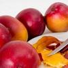 マンゴーの種類・品種一覧とその特徴。産地や旬を学んで味わおう