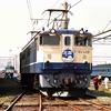 機関車がいっぱいいて、どれを撮ったのか分からなくなってきた 米原機関区撮影会より