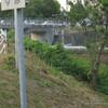 樋本跨線橋とその近辺