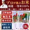 プロが選ぶ厳選一等 米 食味ランクA【 森のくまさん 10kg】