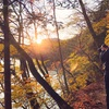 GoToトラベルで秋の日光・紅葉狩りの旅へ