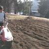 畑の準備をしました。そうです、堆肥まきまきです。
