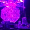 金魚いっぱい!10周年を迎えた「アートアクアリウム展」に行ってきました