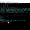 VMware Photon OS 4.0 Beta で簡易 DNS サーバ構築。(dnsmasq)
