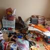 こんなはずじゃなかったのに…ゴミ屋敷同然と化したおもちゃ部屋を大掃除で片付ける!