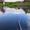 藤沼8(新ベラを釣りに行きました)