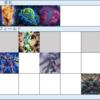 【遊戯王】DDD展開考察 #267(必要札:ゴースト、スワラル、ネクロ)