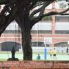 洲本市内の高校1年生が心中?高校名やふたりの関係性とは