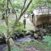 【山中温泉】鶴仙渓川床でリラックス&リフレッシュタイム♪