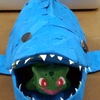 サメの小物入れ完成じゃ!子供達と色紙ペタペタしました!