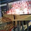阪急三番街(大阪駅・梅田駅近く)のレゴ展示物がすごい