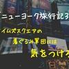 【ニューヨーク旅行記3】タイムズスクエアの着ぐるみ軍団には気をつけろ!