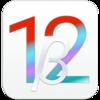 iOS 12 Beta 3(16A5318d)