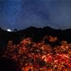 【M18 】槍沢で『色付く真紅のナナカマド越しの槍ヶ岳と星空』を撮る。〈登山〉