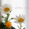 誰かに食べられちゃった白い花