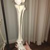腓骨、踵骨(足首)、骨の歪みを改善し血行促進。