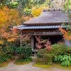 京都・嵯峨野 - 竹と紅葉を楽しむ滝口寺