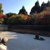 毎日でもボーっとしに行きたい、京都龍安寺の石庭