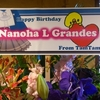 ナノハさん生誕 #アフィクロ #ナノハ #スモモ #ルイナ #リーシャ