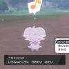色違いニャスパー【国際孵化】