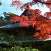 鎌倉五山第一位の巨刹 建長寺の紅葉