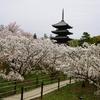春の1泊2日京都旅行(2日目)