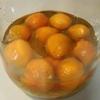 あんずで今流行の果実酢ををつくってみました!手順はとっても簡単ですよ