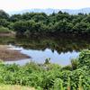 一号ため池(新潟県佐渡)