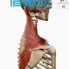 首の動作痛