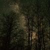 【詩】夜の力
