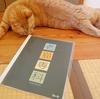 「老猫専科」参加
