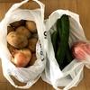 お野菜をたくさん頂きました★