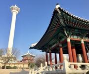 「世界の人々が抱く韓国のイメージ」調査結果に、中国で「あり得ない」の声が
