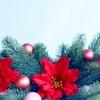 12月の着物を素敵に着こなす、季節の帯あわせと小物選び