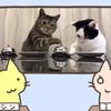 猫「いいか、エサが欲しい時はこのベ・・・」「わかりました」チーン