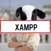XAMPPのインストール手順