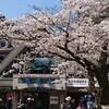 19歳娘と東京都・高尾山に行ってきました!その1